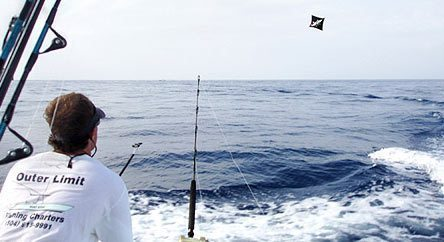 Kite fishing offshore venice la in the gulf deep sea for Kite fishing for tuna